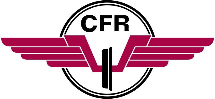 Damage in the Box!: CFR 1907 CLUJ-NAPOCA (Stadion Dr ...  |Cfr
